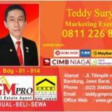 Teddy GM Pro