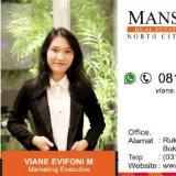 Viane Mansion Property