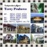 Terry Prabowo
