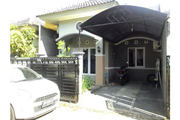 Jual Rumah Siap Huni Yogyakarta, Rumah Jl Palagan Type 60 13268688