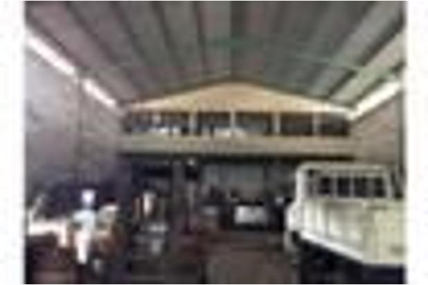 gudang peternakan kapuk cengkareng jakarta barat