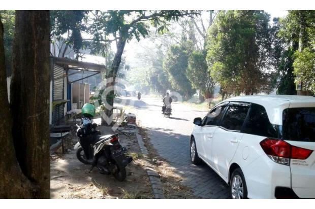 Tanah di Kahuripan Nirwana Cocok untuk Investasi 13247334