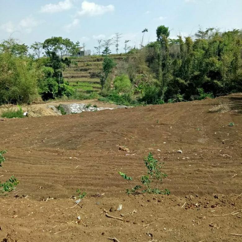 Tanah murah lusa bisa untuk perumahan lokasi di Beji Batu