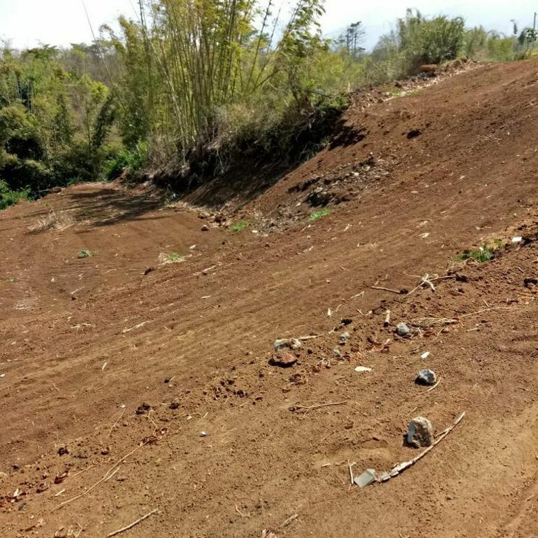 Tanah-Batu-2