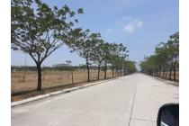 Tanah Kavling Industri KITIC Deltamas Cikarang Luas 1.2 Ha Rp 2.5 Jt/ Meter