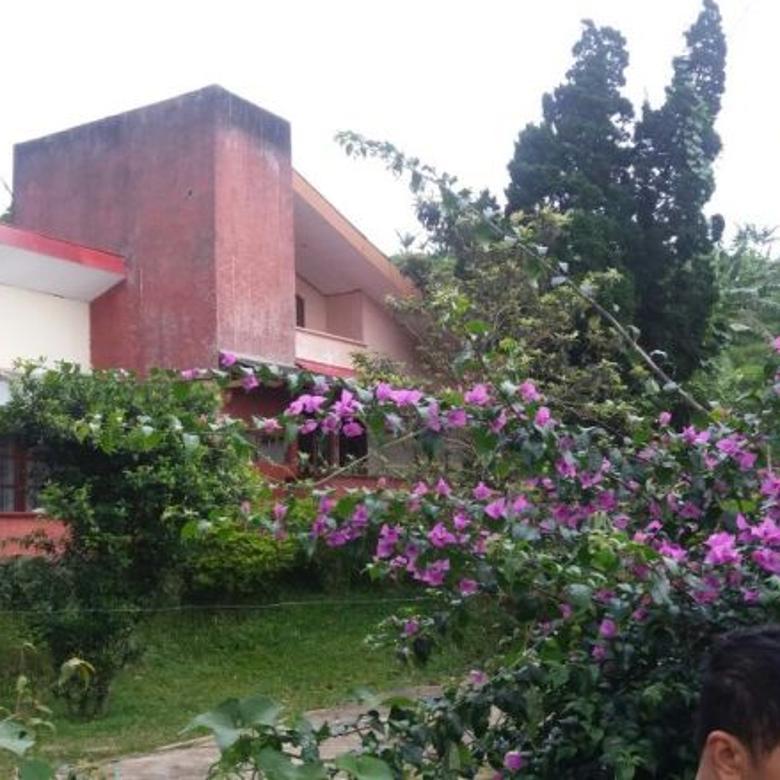 Villa Cipanas Cianjur Tanah Luas Dekat Istana & Jln Provinsi