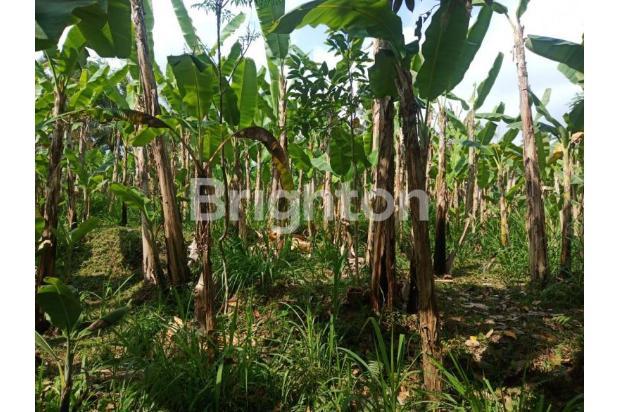 Rp2,68mily Tanah Dijual