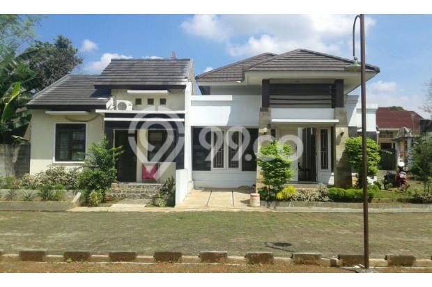 Rumah Tampak Depan 8319081