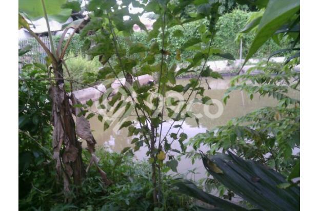Tanah padat+Villa+kolam ikan lt.420m2 5355245