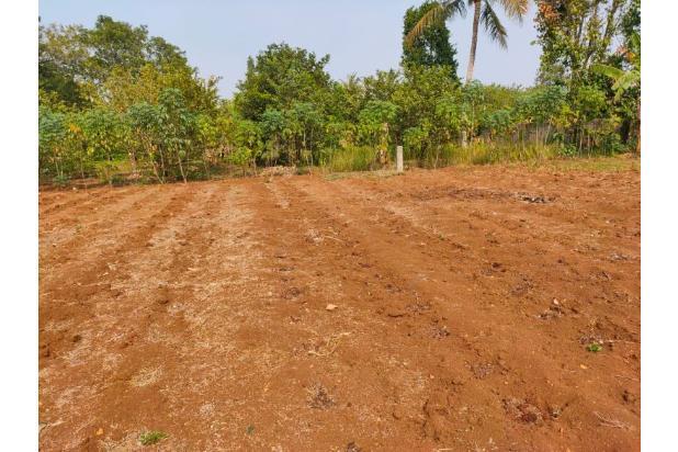 Rp255jt Tanah Dijual