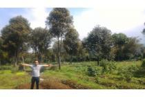 Lahan Strategis & Murah untuk Perumahan 7,76 ha di Cianjur Jawa Barat