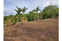 Tanah-Lombok Barat-21