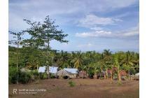 Tanah-Lombok Barat-22