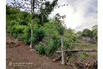 Tanah-Lombok Barat-23