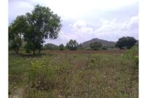 Land For Sale Good Location, Strategic Position, and Cheap Price