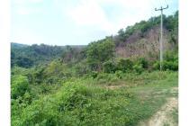 Tanah purwakarta dekat jatiluhur