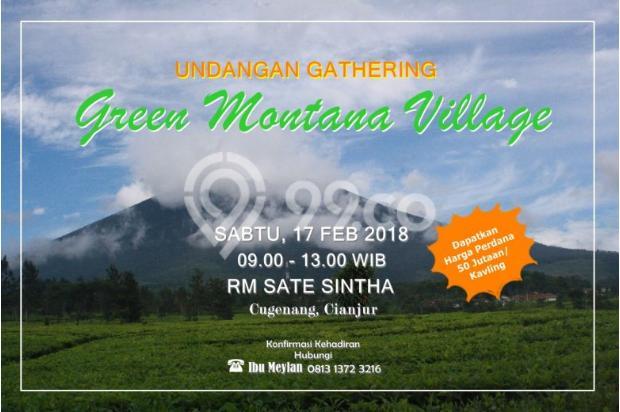 Green Montana Village, dikawasan kebun teh seluas 700Ha Puncak Cipanas 15828992