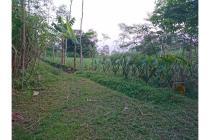 Tanah di Tlogowaru, tdk jauh dr Block Office, sdh ada akses jalan, LT.2661