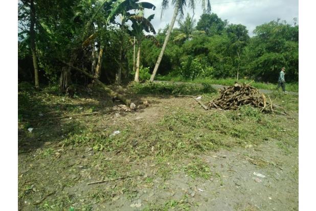 Tanah Kavling Bergaransi Untung 25%: Green Babadan 16049779