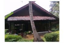 Villa Carita Cottages, nuansa alami