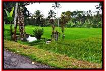 sangat Spesial Prospektif Tanah 9.400 m2 Ubud Payangan YUB526