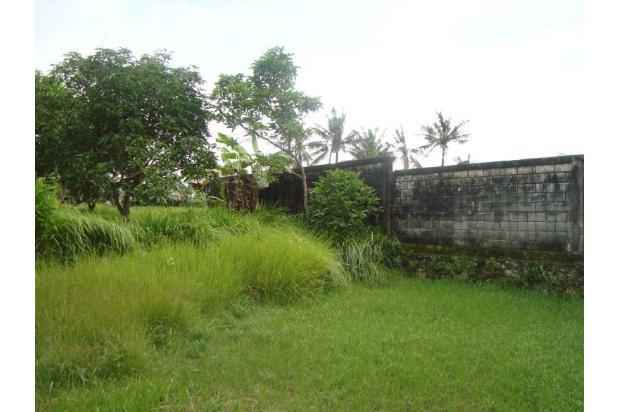 Disewakan Tanah 13 are di Echo Beach - Canggu - Badung - Bali. 21870601