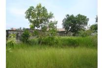 Tanah-Badung-1