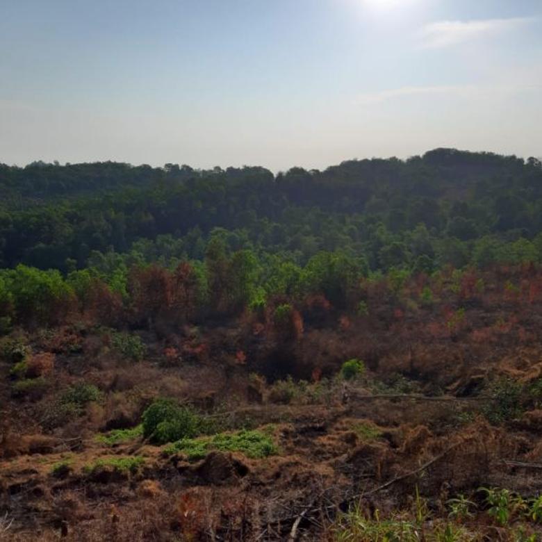 tanah km 13pulau balang  kawasan industri luas 4 ha balikpapan