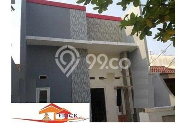 Erick Property 5560768