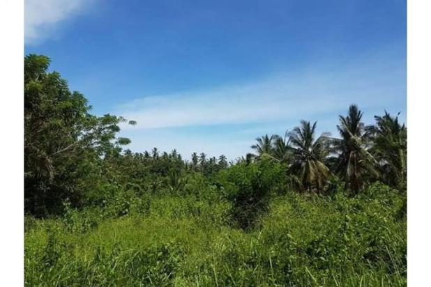 Kavling Pesona Pantai Balian Kawasan Pembangunan Tol 10487593