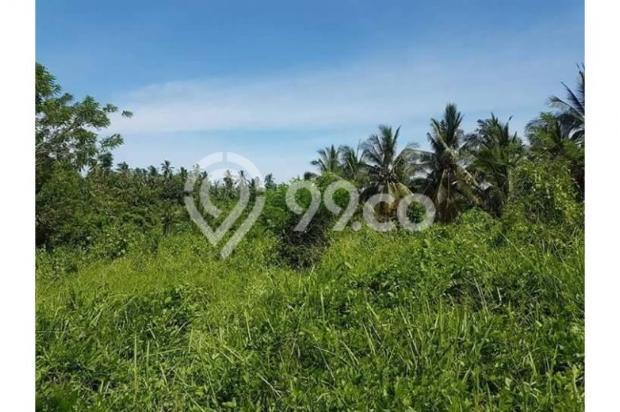 Kavling Pesona Pantai Balian Kawasan Pembangunan Tol 10487596