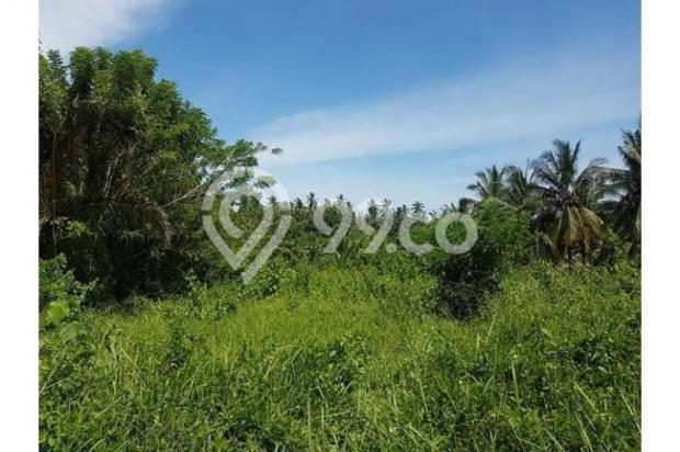 Kavling Pesona Pantai Balian Kawasan Pembangunan Tol 10487595