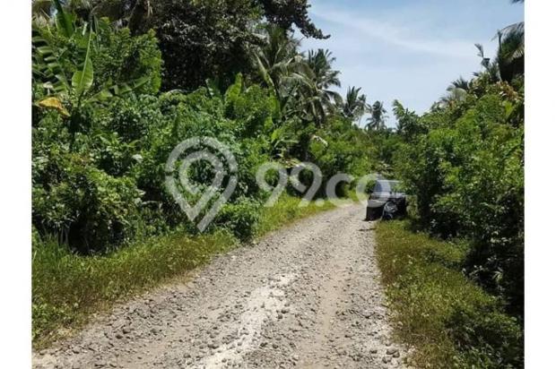 Kavling Pesona Pantai Balian Kawasan Pembangunan Tol 10487598