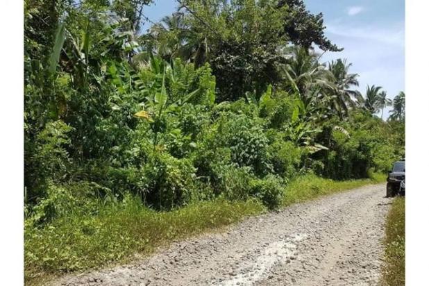Kavling Pesona Pantai Balian Kawasan Pembangunan Tol 10487599