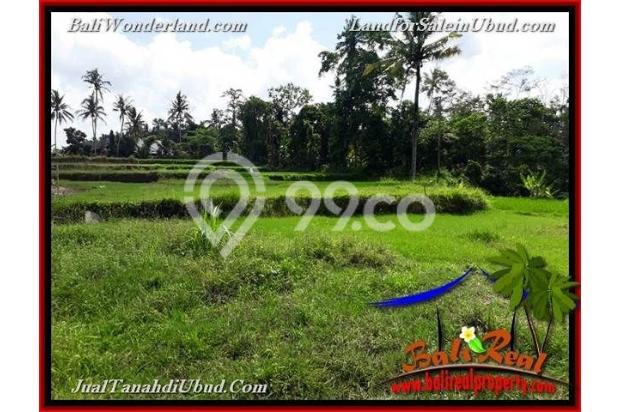 Langka, Murah 6 are View Sawah link Villa 18273903