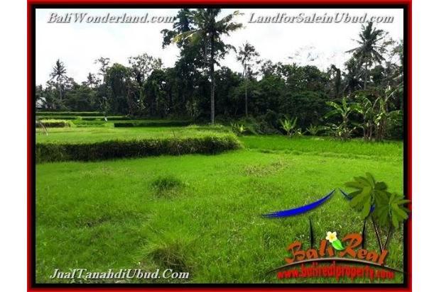 Langka, Murah 6 are View Sawah link Villa 18273902