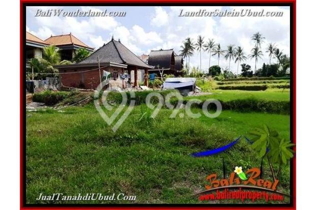 Langka, Murah 6 are View Sawah link Villa 18273904