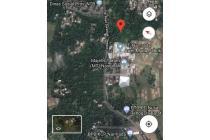 Jual tanah kebun strategis pinggir jalan di lombok barat