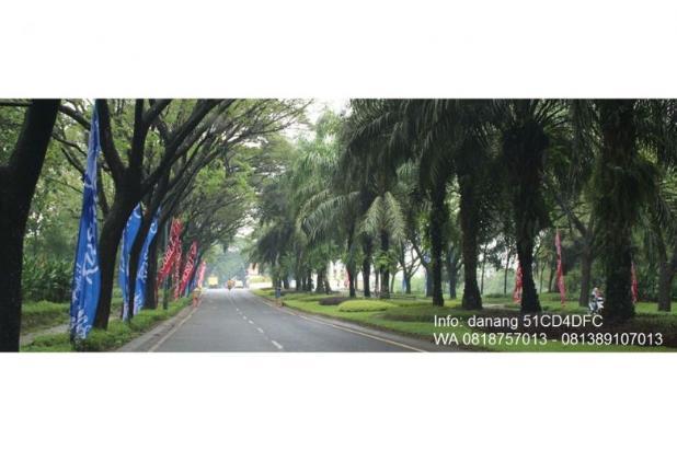 Tentram Laksana Surga Ebony 38/120 Citra Indah Danang 4601343
