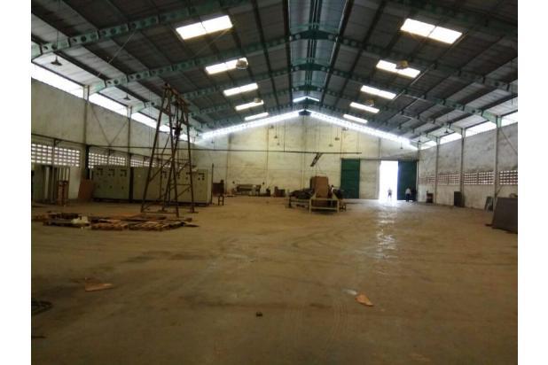 Rp34mily Pabrik Dijual