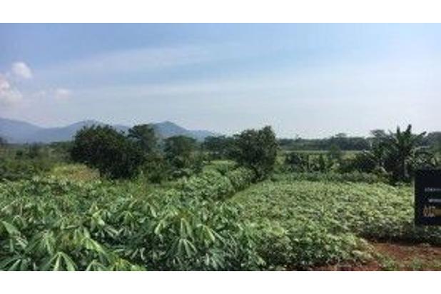 Rp8,48mily Tanah Dijual
