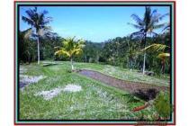 Strategis Prospektif Tanah 1.900 m2 di Ubud Tegalalang E505