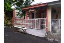Rumah Siap Huni Full Renove, tipe 72/72 Citra Indah Ciputra Nuansa Alam