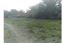 Dijual Tanah di Binjai Kebun Lada Sendang Rejo (0853-3488-3388