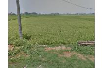 Kavling lokasi pinggir jalan raya didaerah teluk naga tangerang *RWCG/2020/02/0020-TAT*