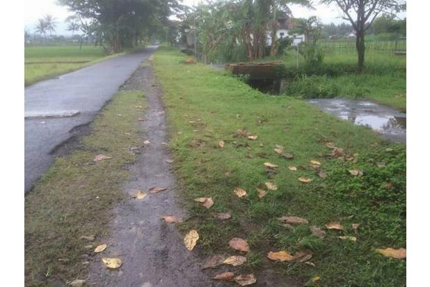 Tanah Murah Dijual di Jl Wonosari km 11 Utara Pasar Piyungan Sleman Jogja 14371347