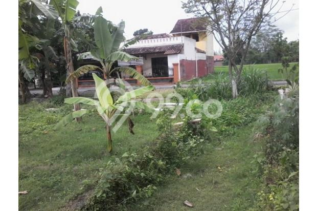 Tanah Murah Dijual di Jl Wonosari km 11 Utara Pasar Piyungan Sleman Jogja 14371348
