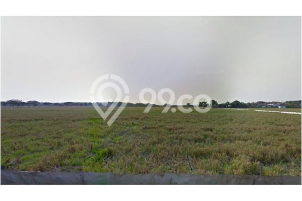 WA 087836460238, Situs Jual Beli Tanah di Telukan Sukoharjo  1,7 Hektar 10266509