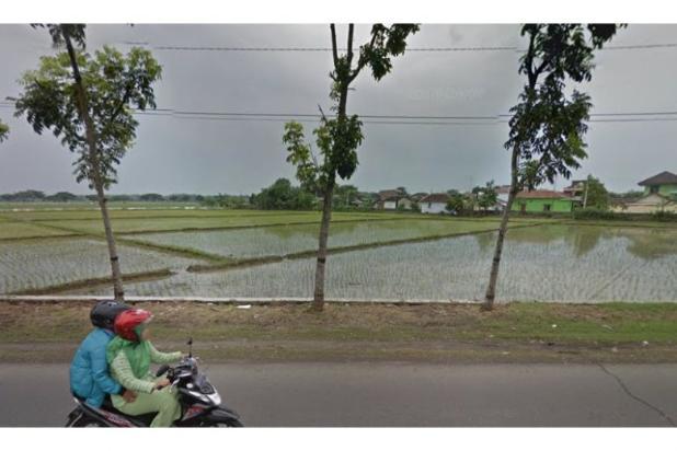 WA 087836460238, Situs Jual Beli Tanah di Telukan Sukoharjo  1,7 Hektar 10266512
