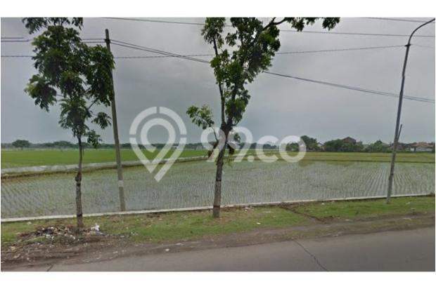 WA 087836460238, Situs Jual Beli Tanah di Telukan Sukoharjo  1,7 Hektar 10266513